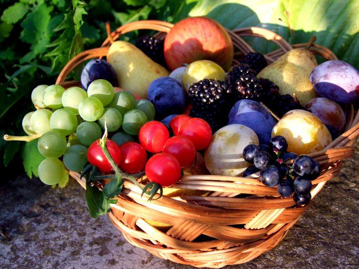 Őszi gyümölcsök. Autumn fruits.