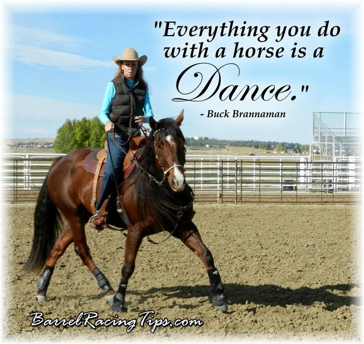 Everything you do with a horse is a dance ~Buck Brannaman