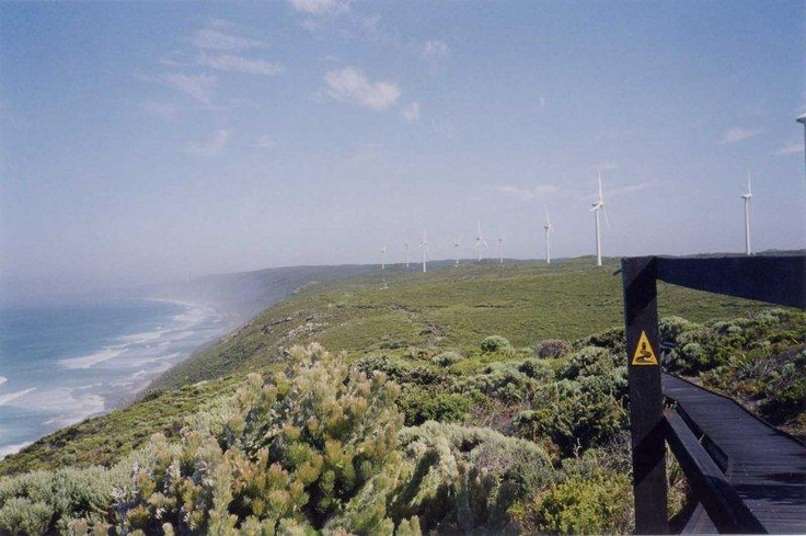 The Bibbulmun Track - Sandpatch at Windfarm