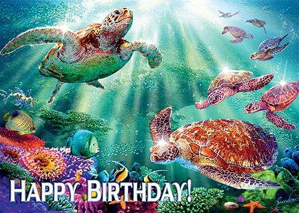 hawaiian birthday cards for facebook | Turtle Voyage - Hawaiian Happy Birthday Greeting Card