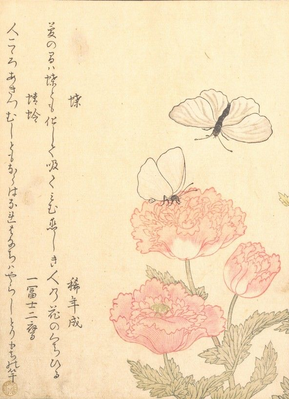 Butterfly (Chō); Dragonfly (Kagerō or Tonbo), from the Picture Book of Crawling Creatures (Ehon mushi erami), detail