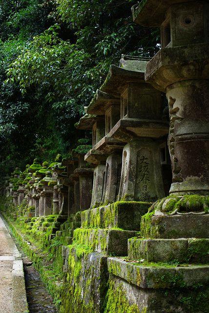 Moss on stone-lantern, The path of the Kasuga-taisha shrine, Nara, Japan