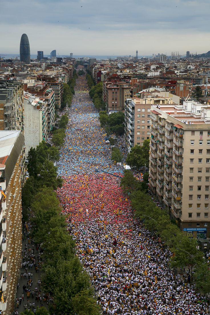 """Via Lliure. """"We want our own independent state"""" - La Meridiana de gom a gom. Diari ARA, Francesc Melcion."""
