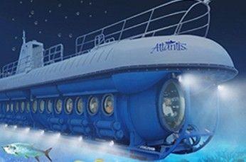 Submarine Night Dive - Experience Cayman's Underwater World at Night!
