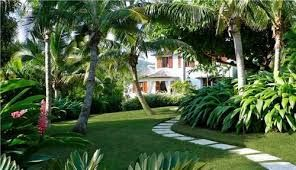Image result for tropical front garden ideas
