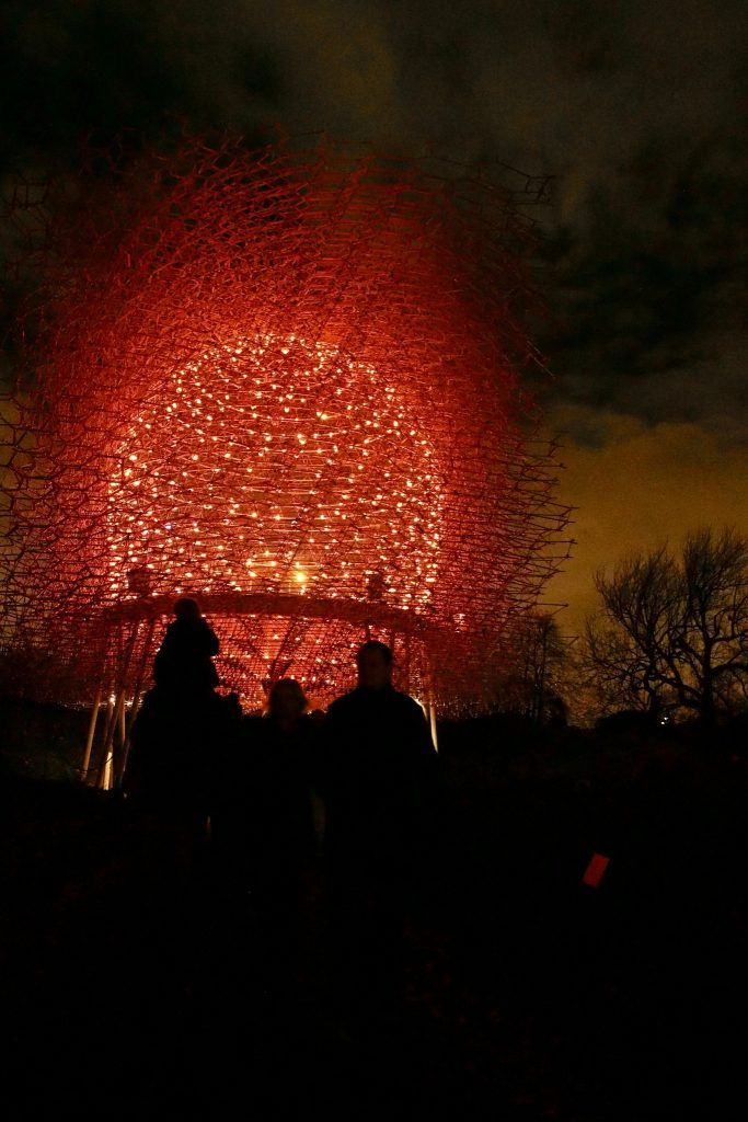 Wolfgang Buttress' bee inspired Hive, is lit up by 1,000 LED lights that welcome visitors to this new installation at Kew. The Hive is pictured during Christmas at Kew 2016.