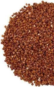 Quinoa-kaaskoekjes. Lekker als tussendoortje of als cracker bij de lunch. Lage GI, eigen recept.