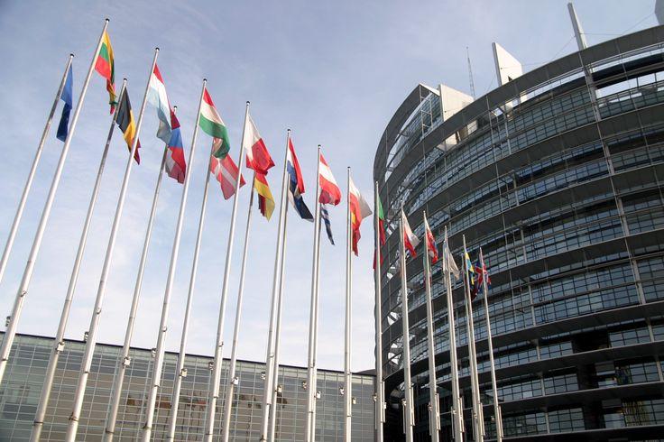 Greenhouse #gas: #EU reaches record low. #Cop21 #energy #oil #climatechange http://www.abo-cop21.net/en/#sthash.K6gdOHZa.dpbs
