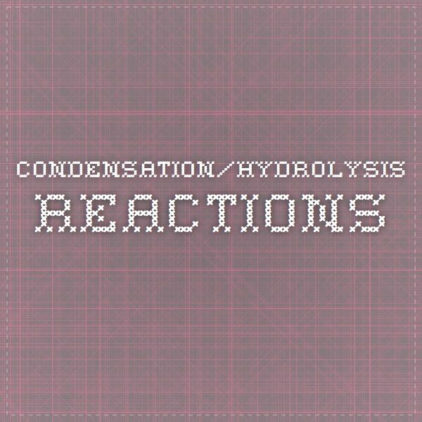 condensation/hydrolysis reactions