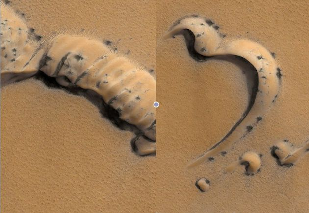 Scientist are trying to determine what these strange black objects seen from 200 miles above the surface of Mars are generating interest and speculation that the unidentified objects could be anything from geysers to sunbathing colonies of microorganisms.