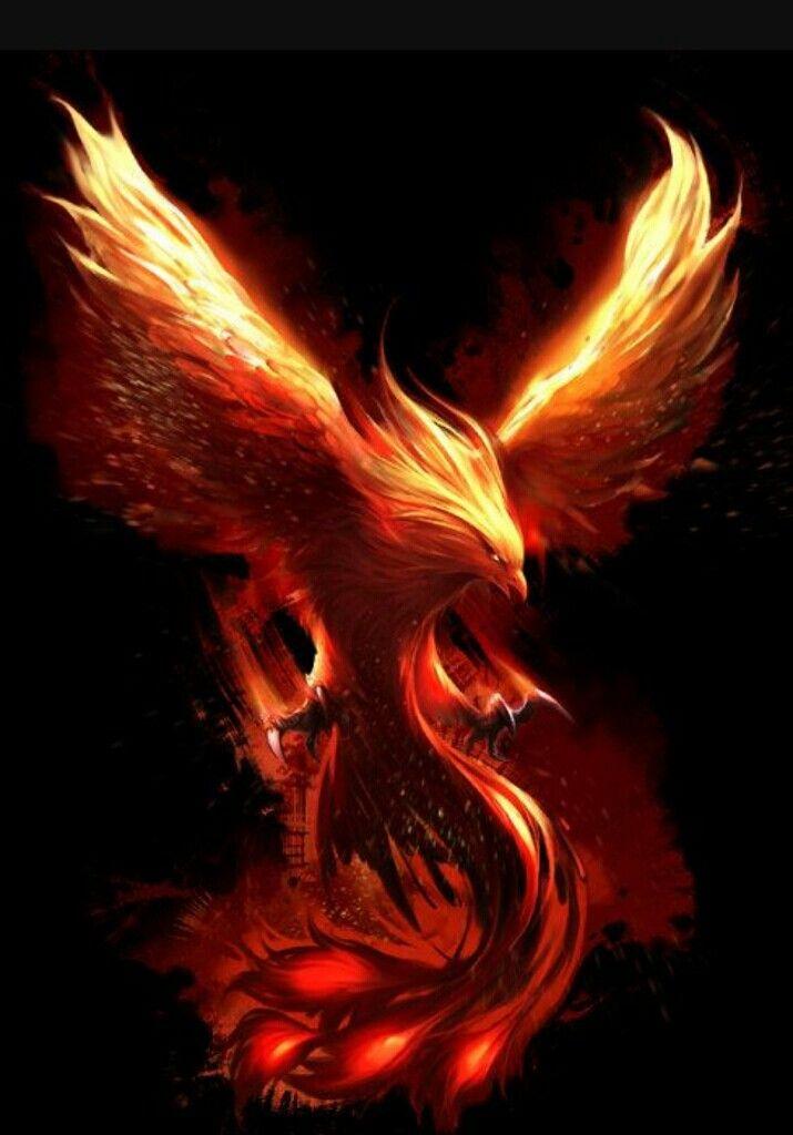 Listcrawler phoenix