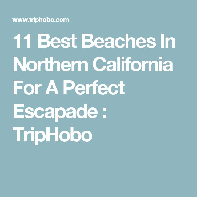 11 Best Beaches In Northern California For A Perfect Escapade : TripHobo