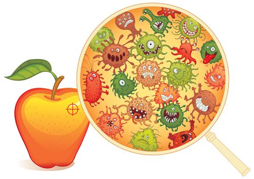 Funny bacteria cartoon styles vector 04                                                                                                                                                                                 Más
