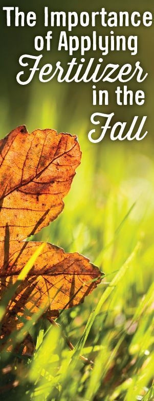 Did you know that fall is the most important time to apply fertilizer? It  helps prepare your lawn for winter stress and helps promote early spring  green up.