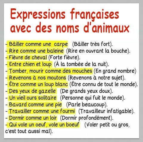 176 best les expressions autour du mot images on pinterest french language learn french - Expression avec le mot coup ...