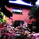 Samango Retreat Holiday Accommodation (Port Edward, South Africa)