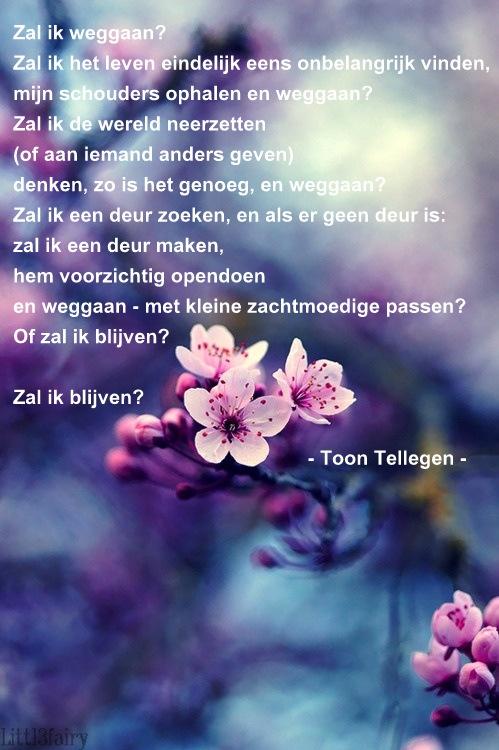 Toon Tellegen poëzie