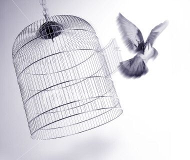 You were a bird in a cage, now look at you.