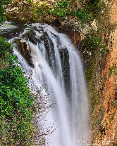 Purlingbrook Falls in Springbrook National Park in QLD, Australia.