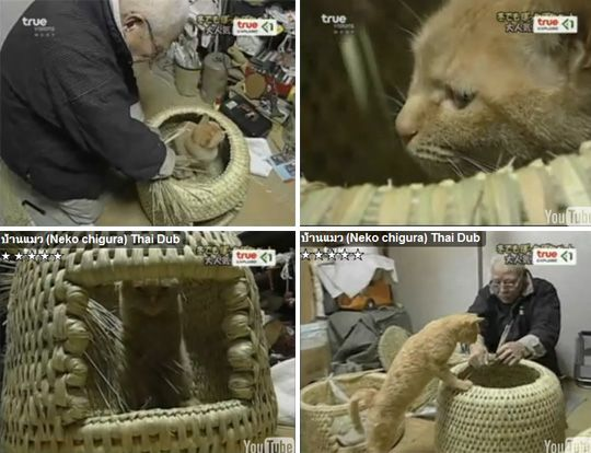 Neko Chigura: Traditional Japanese Cat Bed|moderncat :: cat products, cat toys, cat furniture, and more…all with modern style