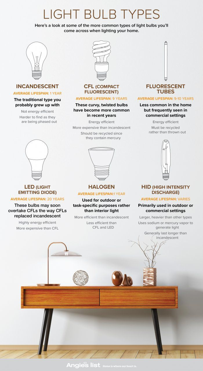 The 25 Best Light Bulb Types Ideas On Pinterest Types Of Lighting Types Of Architecture And