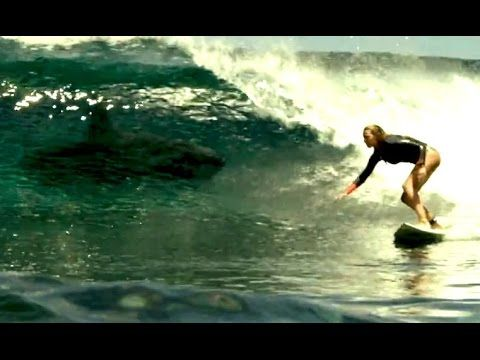 THE SHALLOWS Movie Clip - Shark Attack (2016) Blake Lively Horror Movie HD - YouTube