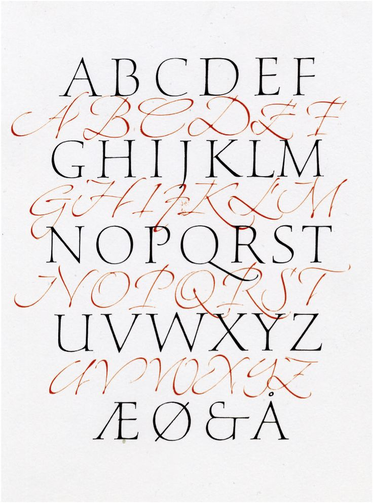 Christopher haanes calligraphy pinterest roman