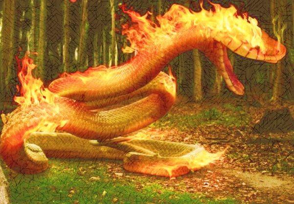 """Lenda do Boitatá (Brasil)  Representada por uma cobra de fogo que protege as matas e os animais e tem a capacidade de perseguir e matar aqueles que desrespeitam a natureza. Acredita-se que este mito é de origem indígena e que seja um dos primeiros do folclore brasileiro. Foram encontrados relatos do boitatá em cartas do padre jesuíta José de Anchieta, em 1560. Na região nordeste, o boitatá é conhecido como """"fogo que corre"""""""