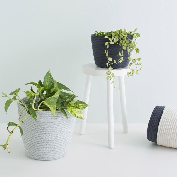 The MARLEY baskets are great for storage of they can double as a holder for your pot plant. Made from dyed rope and then sewn together. Small: 18cm x 25cm wide