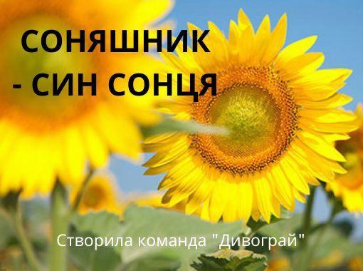 """StoryJumper book - """"СОНЯШНИК - СИН СОНЦЯ""""."""