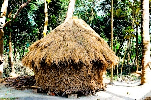 Haystack by Prabir Sen - This is how villagers in India stack hay. Stacking hay this way keeps the moisture away during the monsoon time, and the hay inside the stack remains fresh to be consumed by the cattle the villages own ..In olden times, the villagers used to stock their grains within this cottage like hay hut for the same reason. But now most of the grains they grow are sold and the rest are kept in nylon woven bags for their own consumption. Click on the image to enlarge.