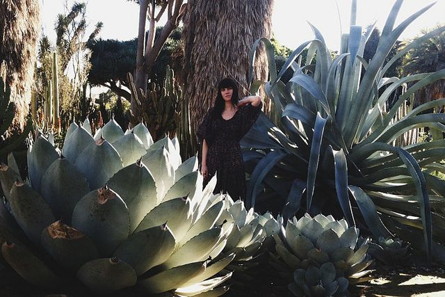 California part 2 by Amy Merrick, via Flickr // The size of these succulents blows my mind!