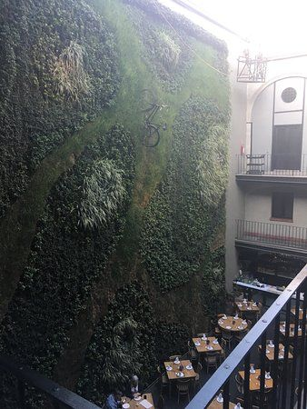 Hotel Downtown Mexico, Mexico City Picture: photo7.jpg - Check out TripAdvisor members' 50,071 candid photos and videos of Hotel Downtown Mexico