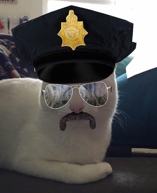 filtros-snapchat-mascotas-animales-13