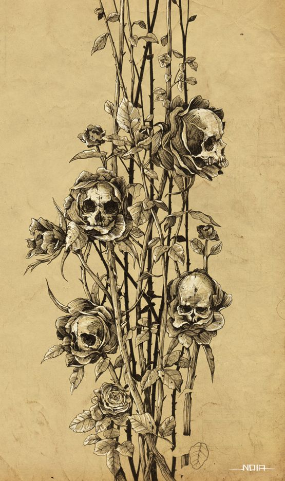 pollution - skull roses by Noia illustration, via Behance