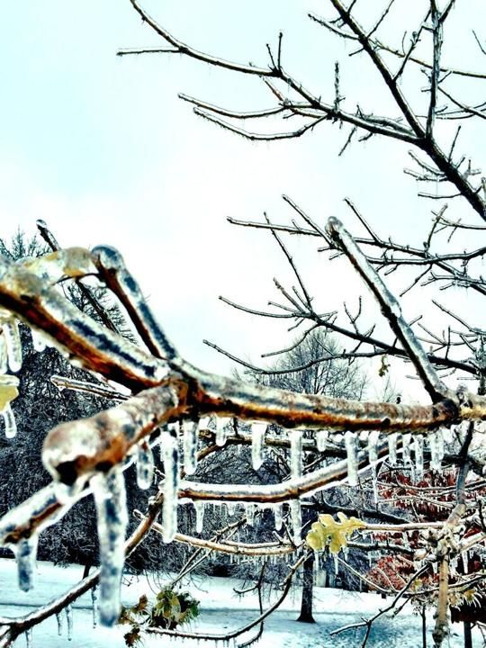 A Twitter image of the ice storm in Canada on Dec. 22.