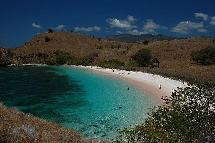 pink beach. komodo island. indonesia