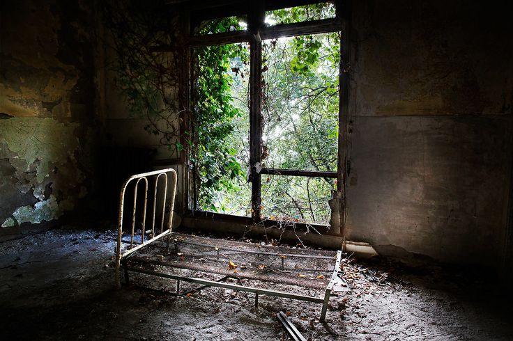 L'isola di Poveglia è uno dei luoghi infestati di fantasmi più famosi. Si dice sia abitata dai fantasmi dei morti di peste e dei pazienti del manicomio.
