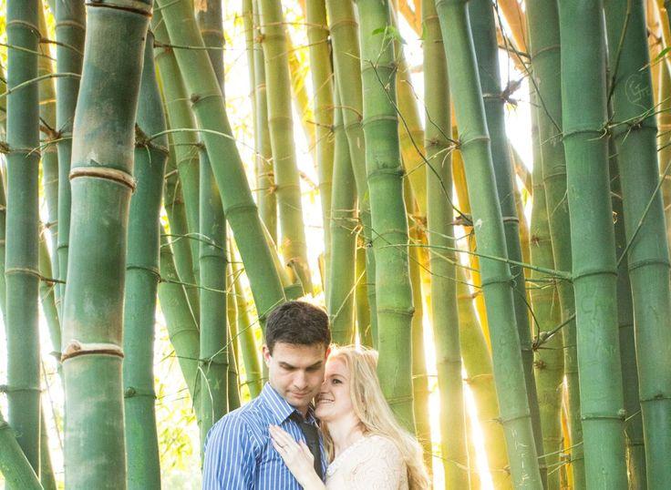 Engagement photos. Vergelegen