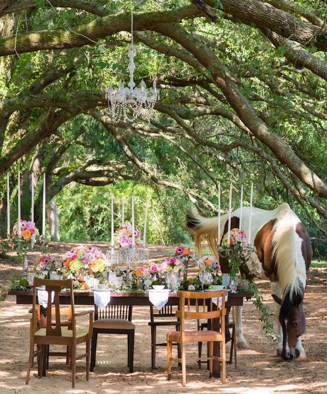 17 Best Images About Alabama Weddings On Pinterest
