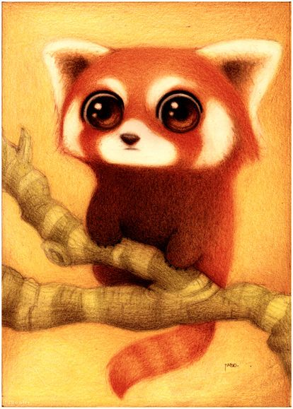 """Panda rojo.""  by *faboarts -  Traditional Art / Drawings / Animals (cute red panda)"