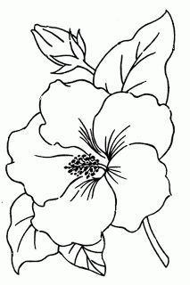 hibiscus on pinterest hibiscus garden hibiscus flowers and flower pattern drawingsimple