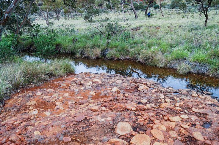 Small creek that runs through Kata Tjuta and crosses the walking trail