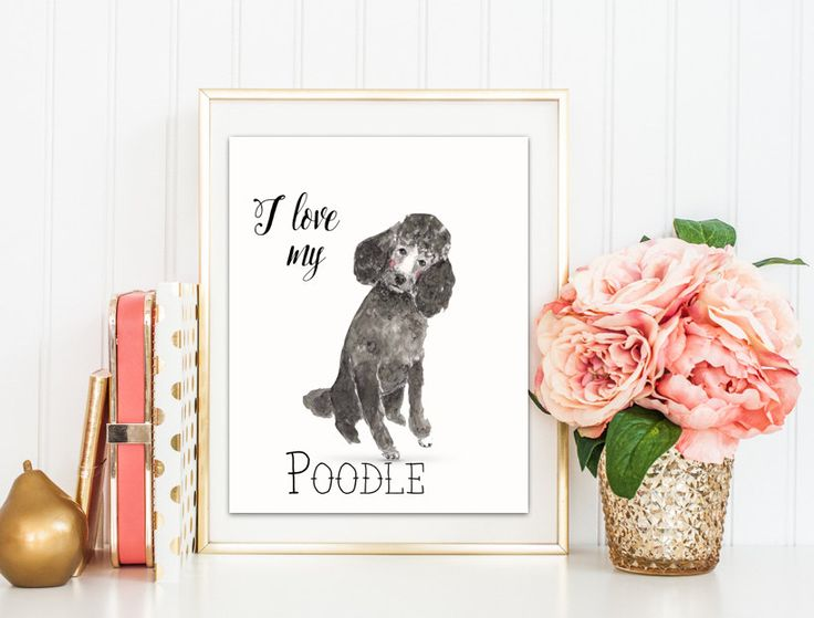 Diy Dog Wall Decor : Digital printable i love my poodle watercolor art print