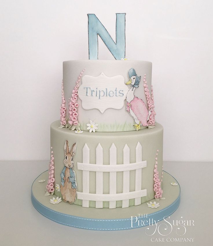 Beatrix Potter theme baby shower cake with hand painted details
