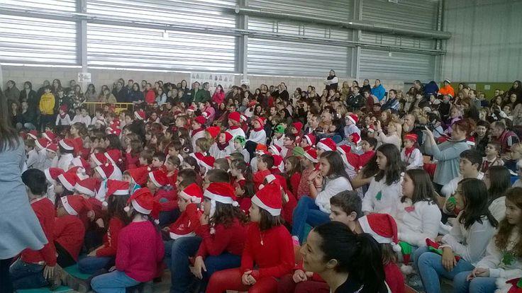 Un año más los alumnos de infantil y primaria celebraron en el pabellón del colegio el festival de Navidad.