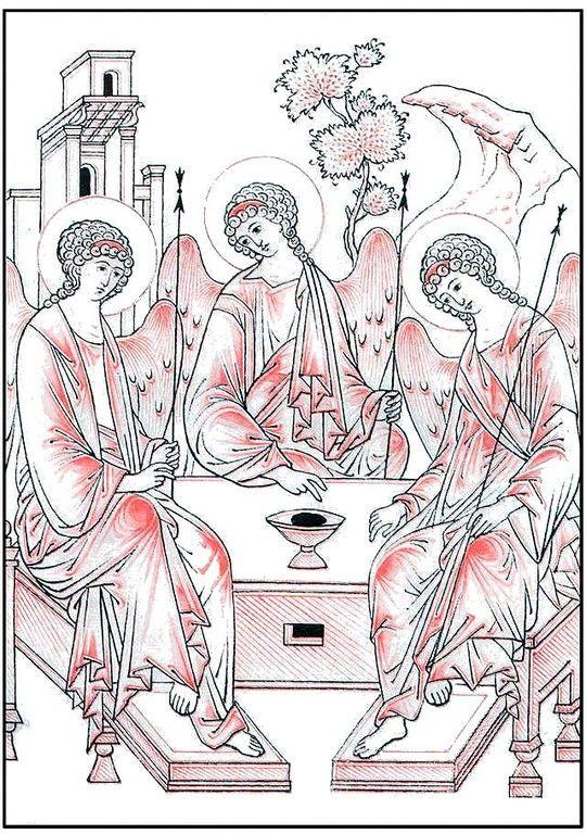trinity sketch drapery