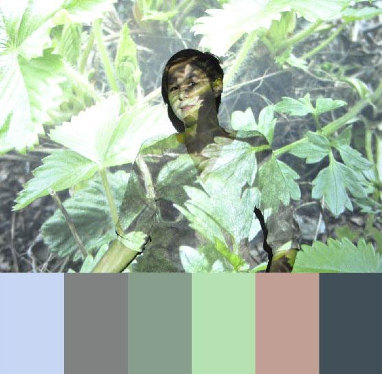 Heidi´s colors