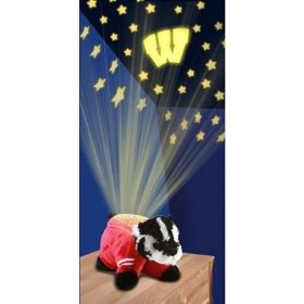 NCAA Wisconsin Badgers Dream Lite Pillow Pet  Order at http://amzn.com/dp/B0094P3ZBI/?tag=trendjogja-20