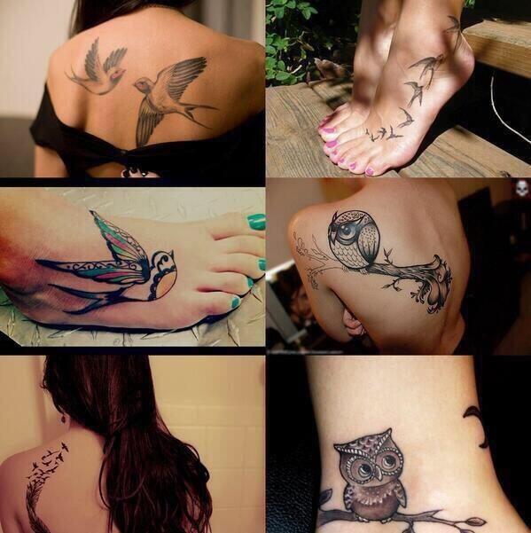 "like them! tato burung"".."